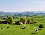 13-daagse autorondreis Engeland - Devon & Cornwall